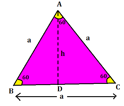 Area of Triangle: Definition And Formulas With Examples_70.1