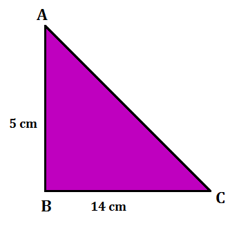 Area of Triangle: Definition And Formulas With Examples_120.1