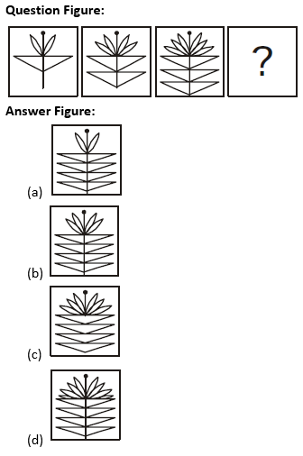 Target SSC Exams 2021-22 10000+ Questions: Attempt Reasoning Quiz | Day 236_70.1