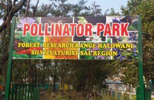 India's first pollinator park opens in Uttarakhand_50.1