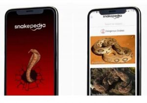 'Snakepedia' mobile app launched in Kerala_50.1