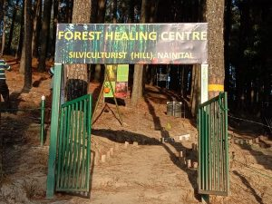 India's first forest healing centre inaugurated in Uttrakand's Ranikhet_50.1