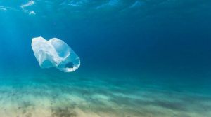 India-Germany enter into agreement to prevent plastic waste entering oceans_50.1