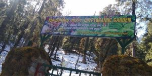 India's first Cryptogamic Garden Inaugurated in Uttarakhand_50.1