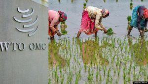 India Enters WTO's Top 10 Agricultural Produce Exporters In 2019_50.1