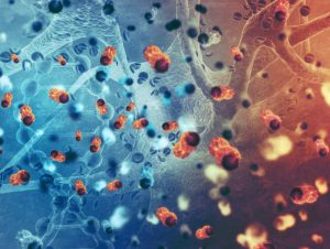 United Kingdom reports cases of 'Norovirus' infection_50.1