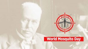 World Mosquito Day observed on 20th August_50.1