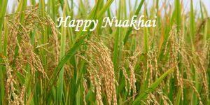 Nuakhai Juhar harvest festival celebrated in Odisha_50.1