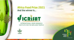 """ICRISAT awarded """"AFRICA FOOD PRIZE 2021""""_50.1"""